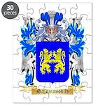 Salomonovitz Puzzle