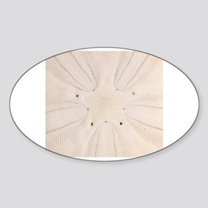 Sticker (Oval)
