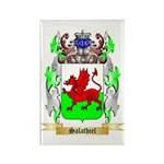 Salathiel Rectangle Magnet (10 pack)