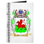Salathiel Journal