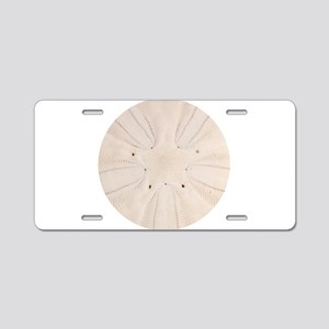 Sand Dollar Pattern Aluminum License Plate