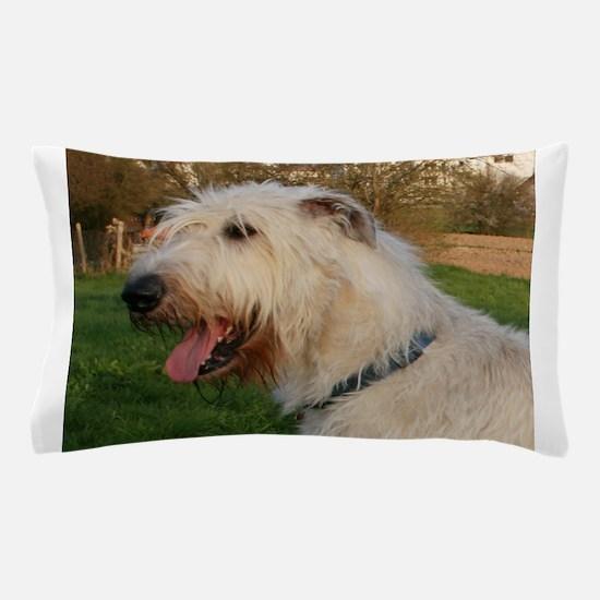 irish wolfhound cream profile Pillow Case