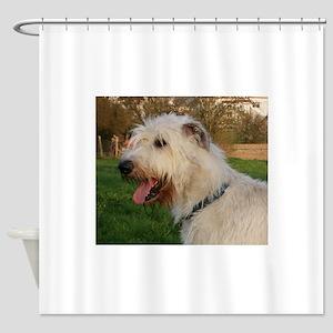 irish wolfhound cream profile Shower Curtain