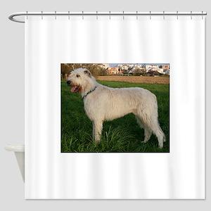 irish wolfhound cream full Shower Curtain