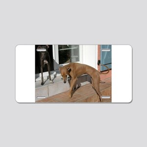 italian greyhound group Aluminum License Plate