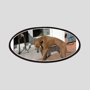 italian greyhound group Patch