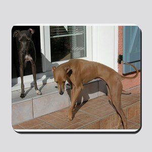 italian greyhound group Mousepad