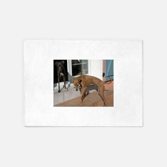 italian greyhound group 5'x7'Area Rug