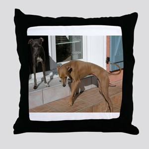 italian greyhound group Throw Pillow