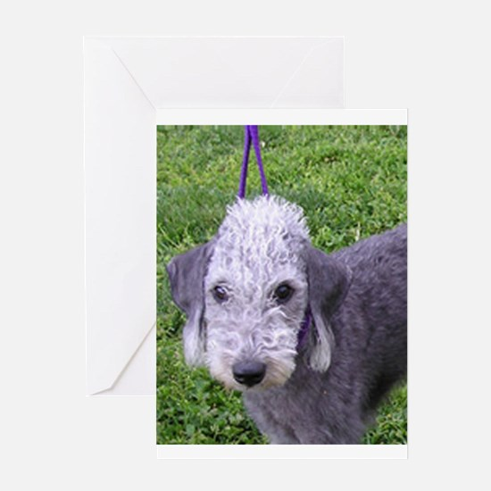 bedlington terrier grey Greeting Cards