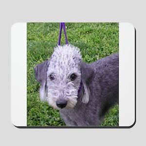 bedlington terrier grey Mousepad