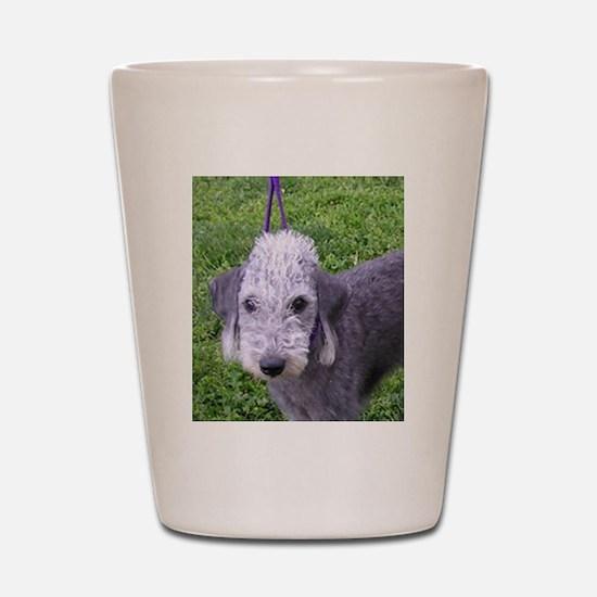 bedlington terrier grey Shot Glass