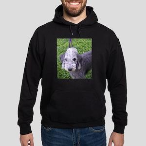 bedlington terrier grey Hoodie