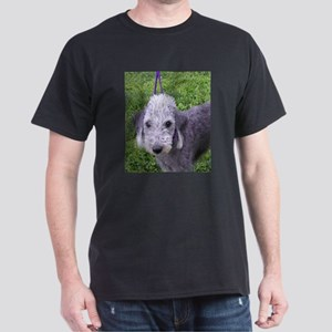 bedlington terrier grey T-Shirt