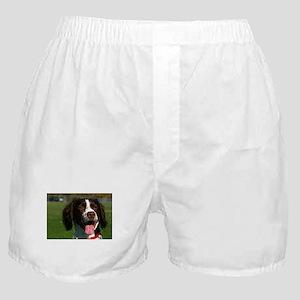 brittany spaniel Boxer Shorts
