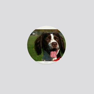 brittany spaniel Mini Button