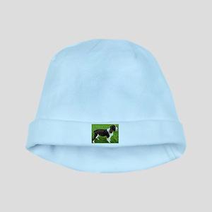 english springer spaniel liver full baby hat