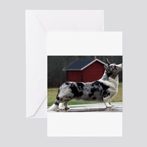 cardigan welsh corgi blue merle full Greeting Card