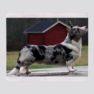 cardigan welsh corgi blue merle full Throw Blanket