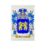 Salaman Rectangle Magnet (10 pack)
