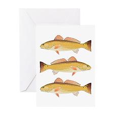 Redfish Red Drum Greeting Cards