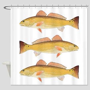 Redfish Red Drum Shower Curtain