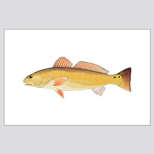 Redfish Red Drum Posters