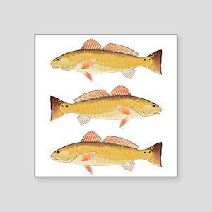 Redfish Red Drum Sticker