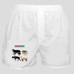 NASCARTING! Boxer Shorts