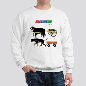 NASCARTING! Sweatshirt