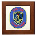 USS Sellers (DDG 11) Framed Tile