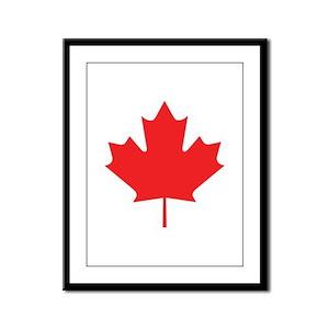 Red Maple Leaf Framed Panel Print