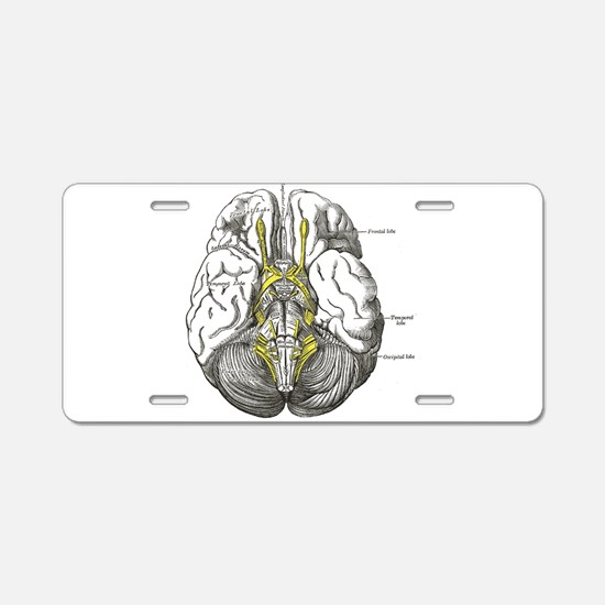 grey's anatomy brain Aluminum License Plate
