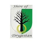 Drygestan Rectangle Magnet (100 pack)