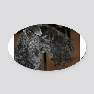 kerry blue terrier Oval Car Magnet