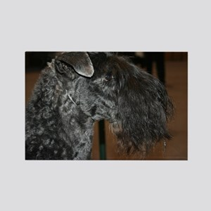 kerry blue terrier Magnets