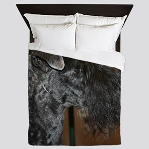kerry blue terrier Queen Duvet