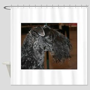 kerry blue terrier Shower Curtain