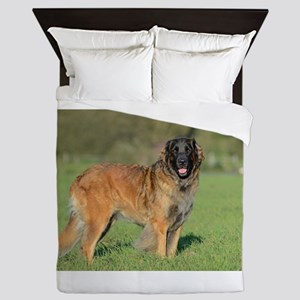 leonberger full Queen Duvet