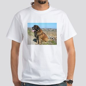 leonberger sitting T-Shirt