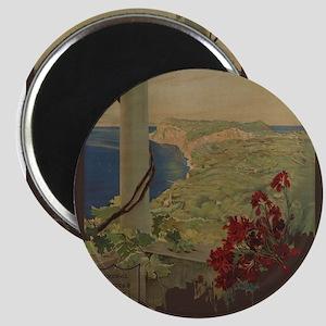 Vintage poster - Capri Magnets