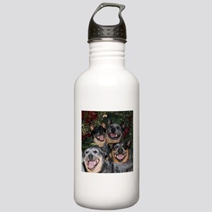 Joy to the World ACD Style Water Bottle