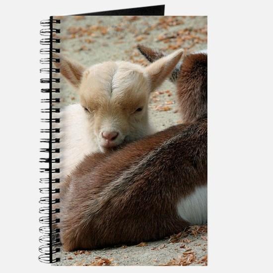 Goat 001 Journal