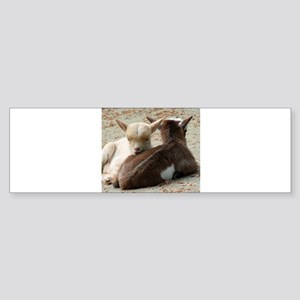 Goat 001 Bumper Sticker