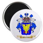 Shuldam Magnet