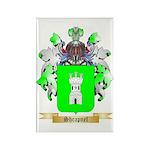 Shrapnel Rectangle Magnet (10 pack)