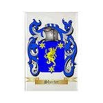 Shorter Rectangle Magnet (100 pack)