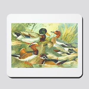 Duck Mousepad