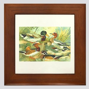 Duck Framed Tile
