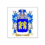 Shlomovits Square Sticker 3